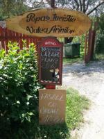 Popasul Turistic Valea Arinilor, Cazare Arad
