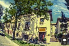 Pensiunea PARK. Cazare Timișoara-Timis