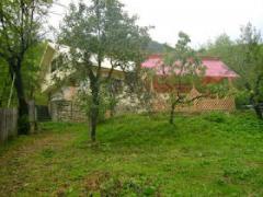 Cabana Siriu - Siriu, Valea Buzaului