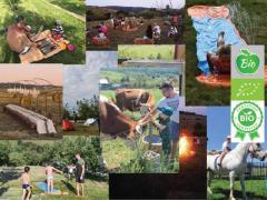 La Bunicu. Camping Sălciua Nouă